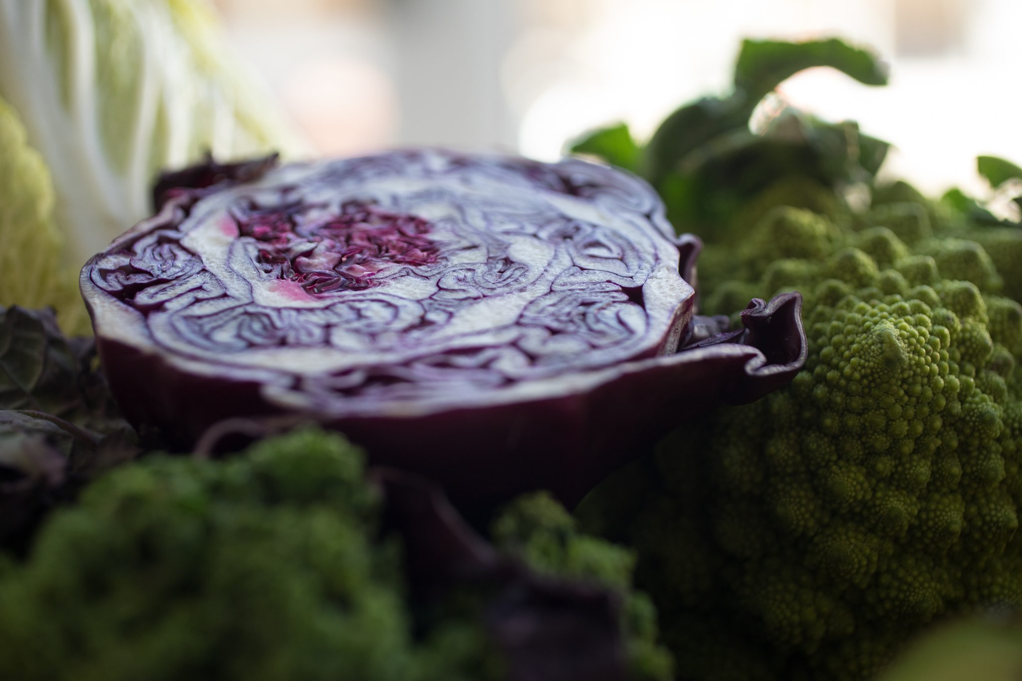 Beautiful Brassicas in Brief – A Girl's Best Friend?